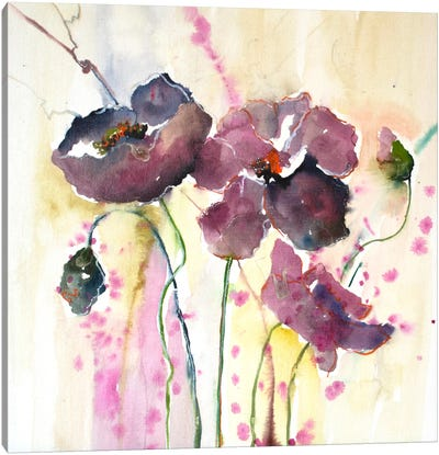 Plum Poppies II Canvas Art Print