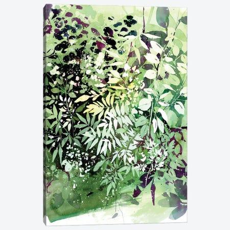 Green Garden Canvas Print #CIG60} by CreativeIngrid Canvas Wall Art