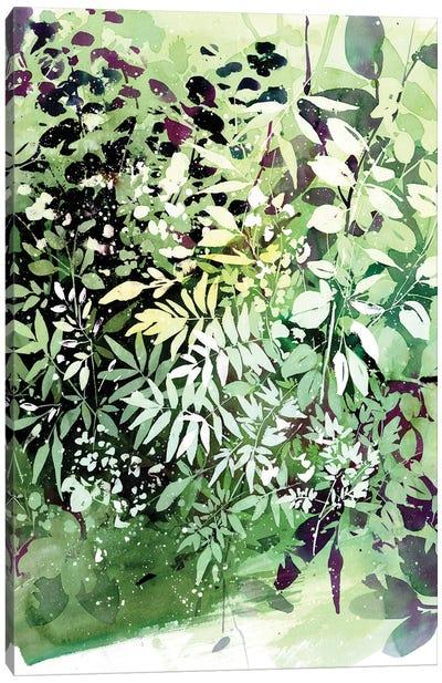 Green Garden Canvas Art Print