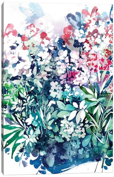Meanwhile Garden Canvas Art Print