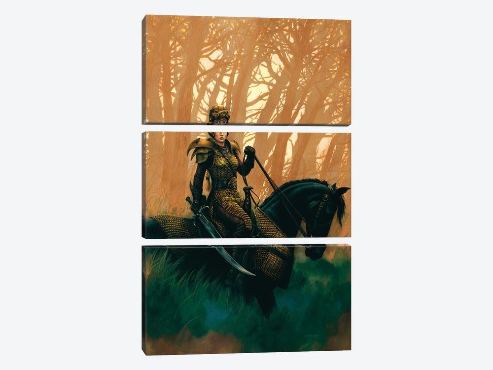 Draconis by Ciruelo 3-piece Canvas Print
