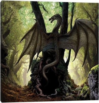 Dragon Cave Canvas Art Print