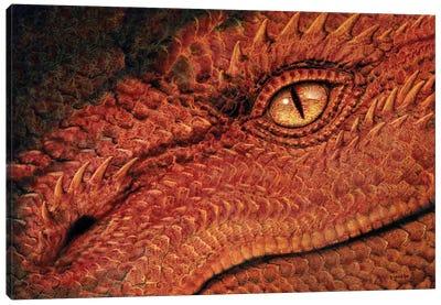 Dragon Eye Canvas Art Print
