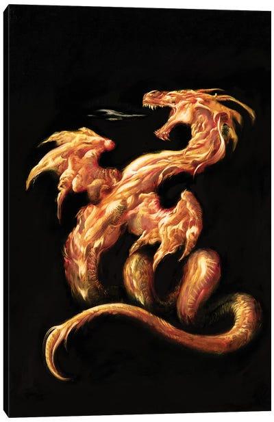 Fire Canvas Art Print