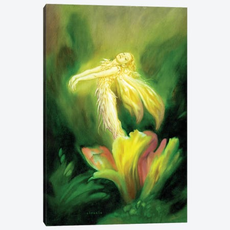 Flower Fairy Canvas Print #CIL49} by Ciruelo Canvas Art Print