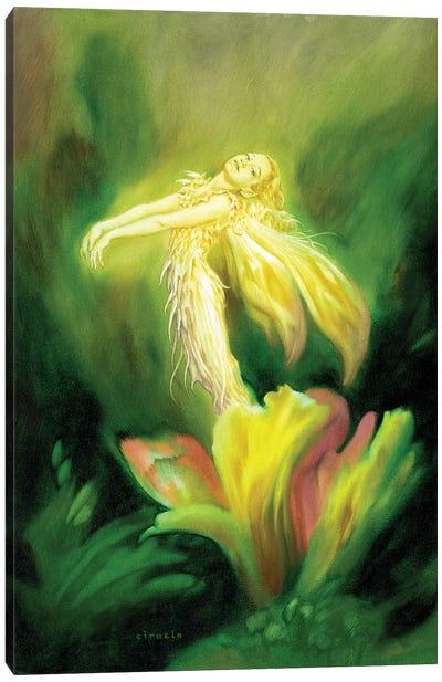 Flower Fairy Canvas Art Print