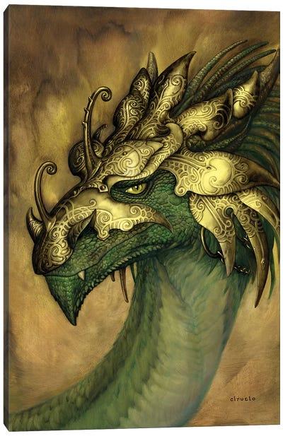 Rey Vultan Canvas Art Print