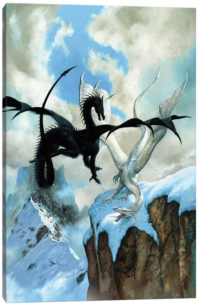 Battle Dragon Canvas Art Print