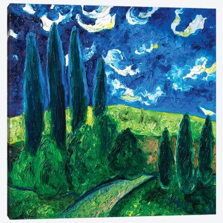 Cipressi Blu Canvas Print #CIR147} by Chiara Magni Canvas Art