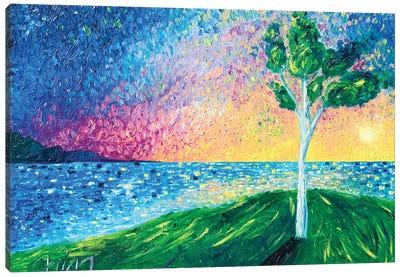 Sun Kissed Canvas Art Print