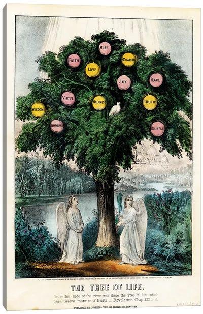 The Tree of Life, 1870 Canvas Art Print
