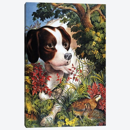 Currier & Ives: Dog, 1866 Canvas Print #CIV4} by Currier & Ives Canvas Artwork