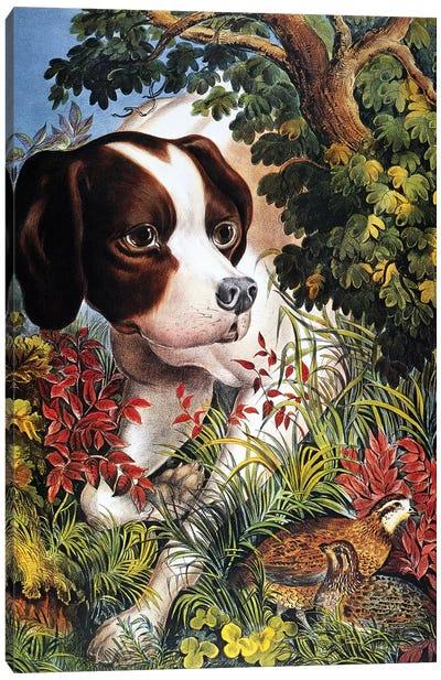 Currier & Ives: Dog, 1866 Canvas Art Print