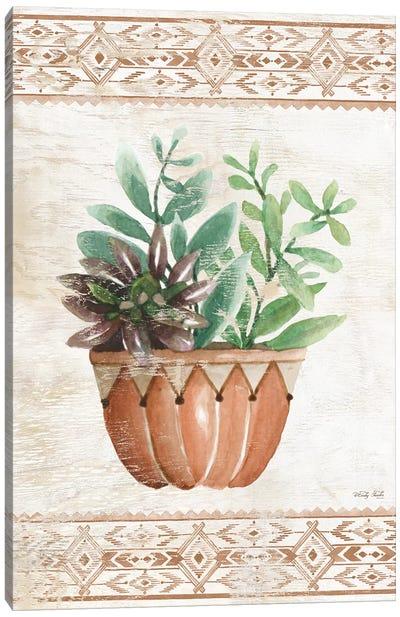 Southwest Terracotta Succulents I Canvas Art Print