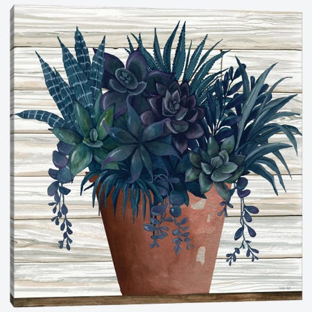 Remarkable Succulents II Canvas Print #CJA245} by Cindy Jacobs Canvas Wall Art