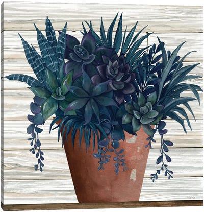 Remarkable Succulents II Canvas Art Print