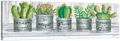 Galvanized Pot Succulents I Canvas Art Print