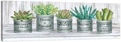 Galvanized Pot Succulents II Canvas Art Print