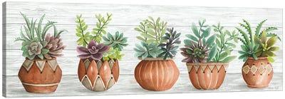 Terracotta Pots I Canvas Art Print