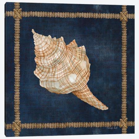 Seashell on Navy IV Canvas Print #CJA272} by Cindy Jacobs Canvas Art