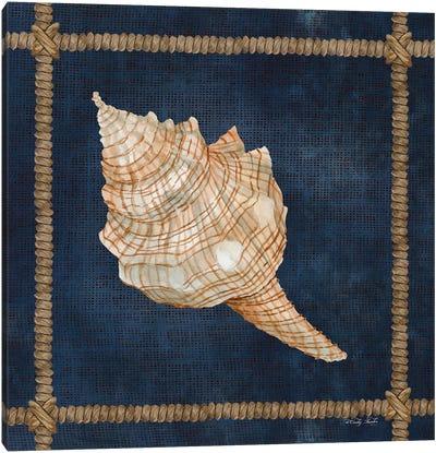 Seashell on Navy IV Canvas Art Print