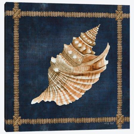 Seashell on Navy V Canvas Print #CJA273} by Cindy Jacobs Canvas Wall Art