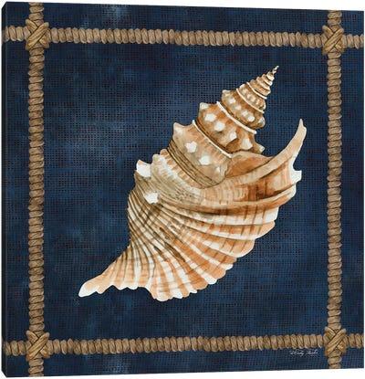 Seashell on Navy V Canvas Art Print