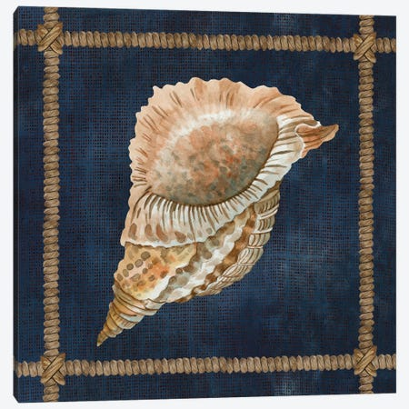 Seashell on Navy VI Canvas Print #CJA274} by Cindy Jacobs Canvas Art Print