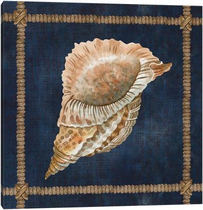 Seashell on Navy VI Canvas Art Print