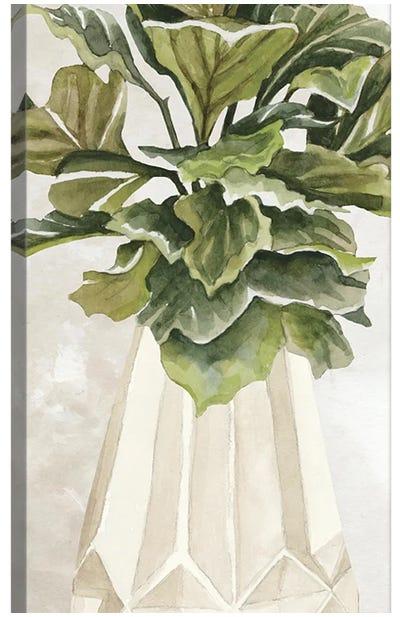 Simple Beauty II Canvas Art Print