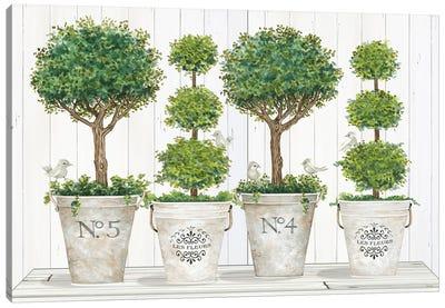 Topiary Still Life Canvas Art Print