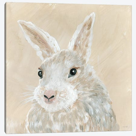 Benny the Bunny Canvas Print #CJA279} by Cindy Jacobs Canvas Art