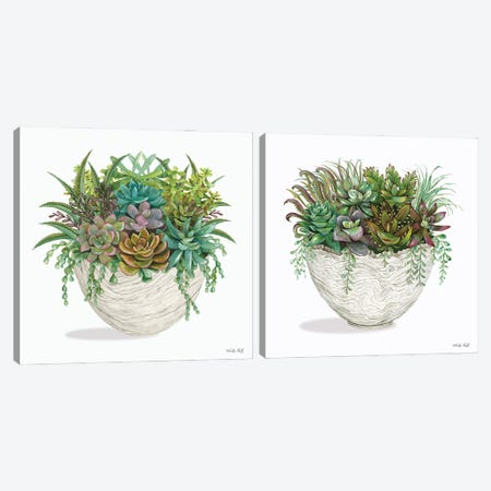 White Wood Succulent Diptych Canvas Print Set #CJA2HSET001} by Cindy Jacobs Canvas Wall Art