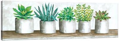Succulent Pots Canvas Art Print