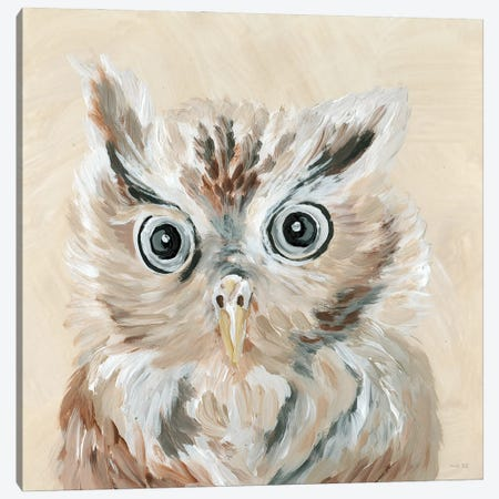 Willow the Owl Canvas Print #CJA304} by Cindy Jacobs Art Print