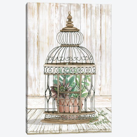 Caged Beauty I Canvas Print #CJA336} by Cindy Jacobs Canvas Artwork