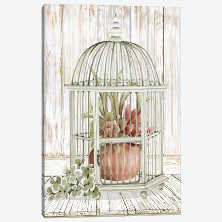 Caged Beauty II Canvas Print #CJA337} by Cindy Jacobs Canvas Artwork