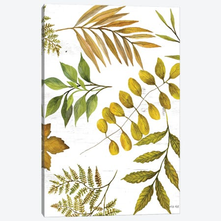 Leaf Patterns I Canvas Print #CJA345} by Cindy Jacobs Canvas Print