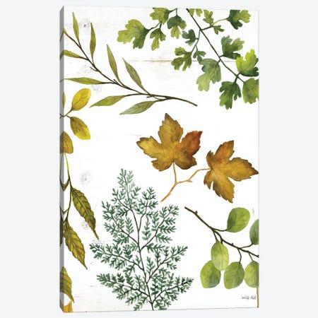 Leaf Patterns II Canvas Print #CJA346} by Cindy Jacobs Canvas Art Print