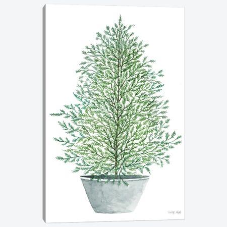 Cedar Tree In Pot Canvas Print #CJA375} by Cindy Jacobs Canvas Wall Art