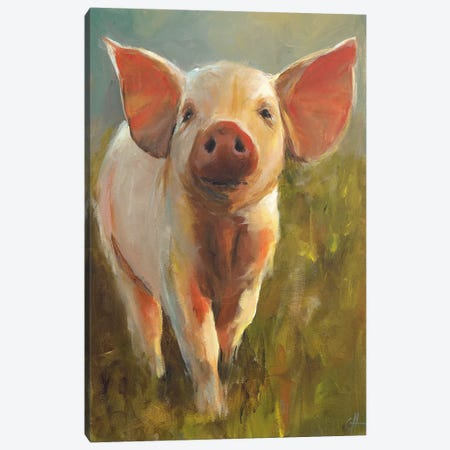 Morning Pig Canvas Print #CJH3} by Cari J. Humphry Canvas Art Print