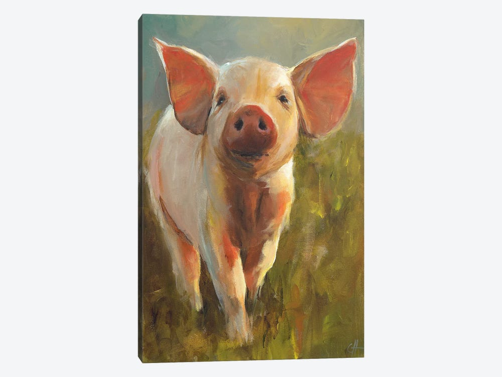 Morning Pig by Cari J. Humphry 1-piece Canvas Wall Art