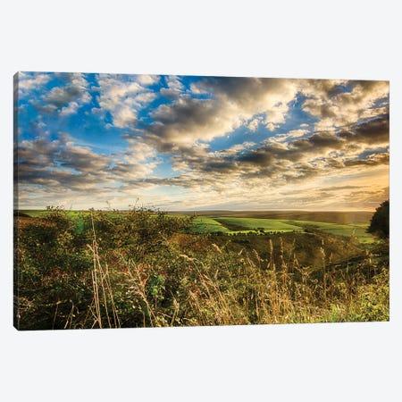 Sun Kissed Exmoor Canvas Print #CKP26} by Colin Kemp Photography Canvas Print