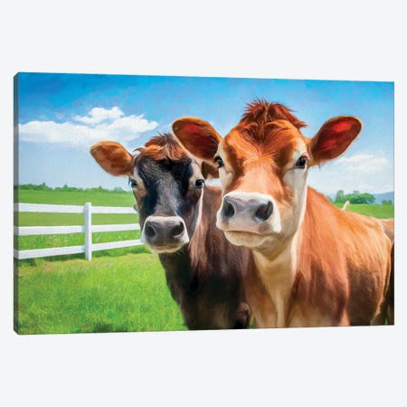 Two Cows - Photo Based Art Canvas Print #CKP40} by Colin Kemp Photography Canvas Artwork