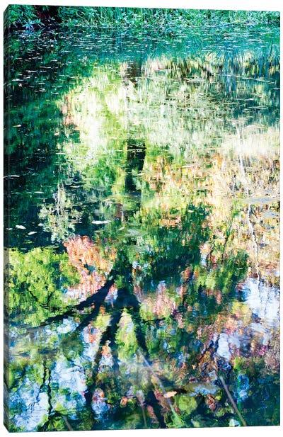 Monet At Stourhead? Canvas Art Print
