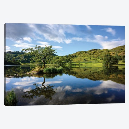 Lone Tree At Rydal Water, Lake District Canvas Print #CKP59} by Colin Kemp Photography Art Print