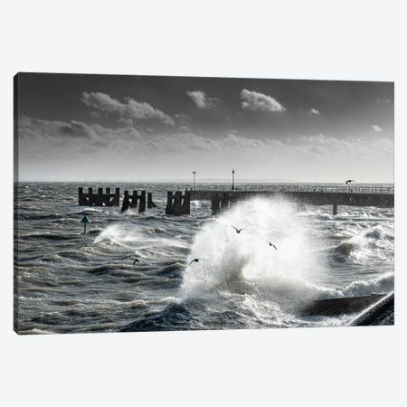 Storm-Chased Gulls - Shoeburyness Canvas Print #CKP63} by Colin Kemp Photography Canvas Wall Art