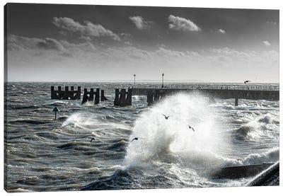 Storm-Chased Gulls - Shoeburyness Canvas Art Print