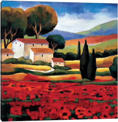 Poppy Field II Canvas Art Print