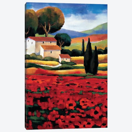 Poppy Field II Canvas Print #CLA4} by Janine Clarke Canvas Art Print